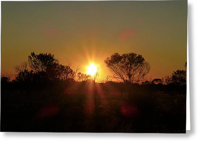 Rays Pyrography Greeting Cards - Sunset behind the trees Greeting Card by Girish J