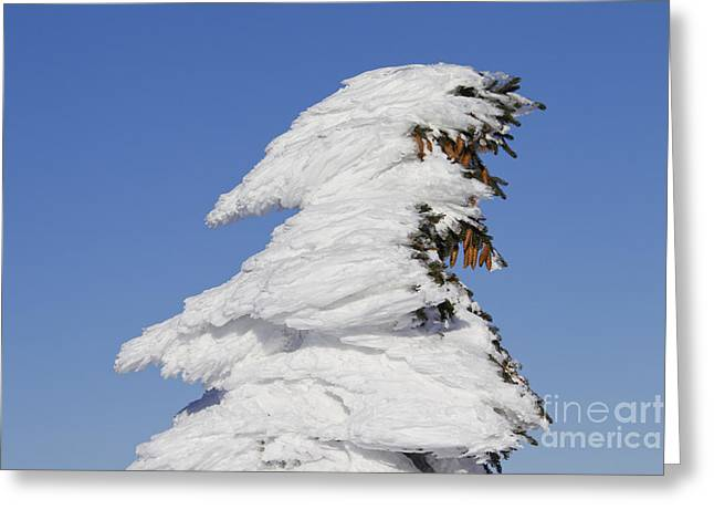 Brocken Greeting Cards - 120903p312 Greeting Card by Arterra Picture Library