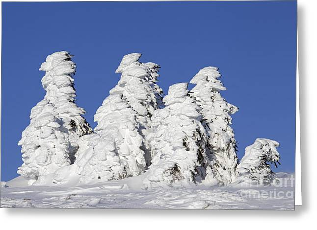 Brocken Greeting Cards - 120903p328 Greeting Card by Arterra Picture Library