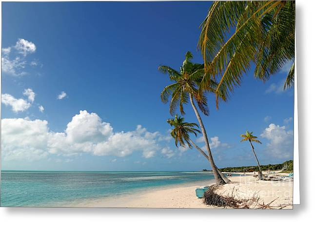 Cruise Vacation Greeting Cards - Beach at Coco Cay Greeting Card by Amy Cicconi