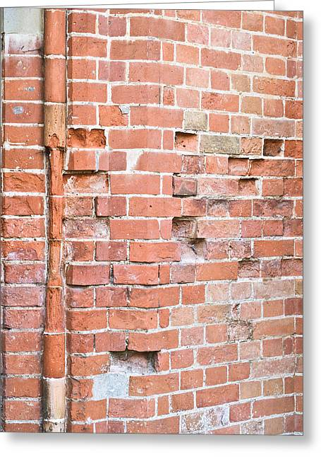 Brick Buildings Greeting Cards - Brick wall Greeting Card by Tom Gowanlock