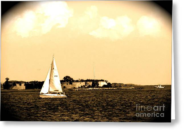 Lanscape Pyrography Greeting Cards - Charleston sc  Greeting Card by Frank Conrad