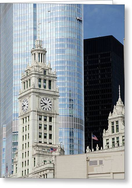 Illinois, Chicago Greeting Card by Cindy Miller Hopkins