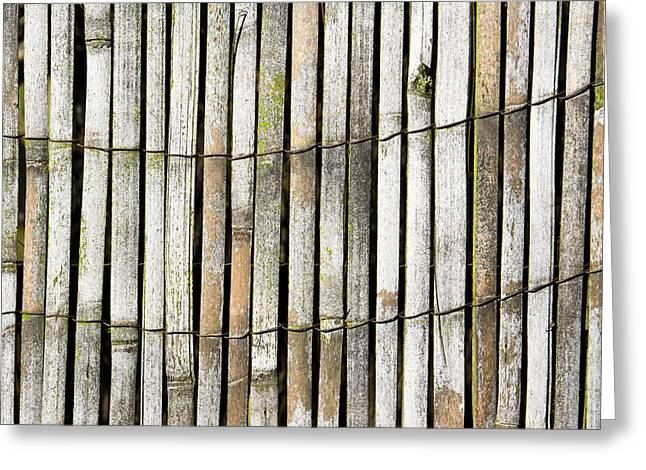 Recently Sold -  - Bamboo Fence Greeting Cards - Wood background Greeting Card by Tom Gowanlock