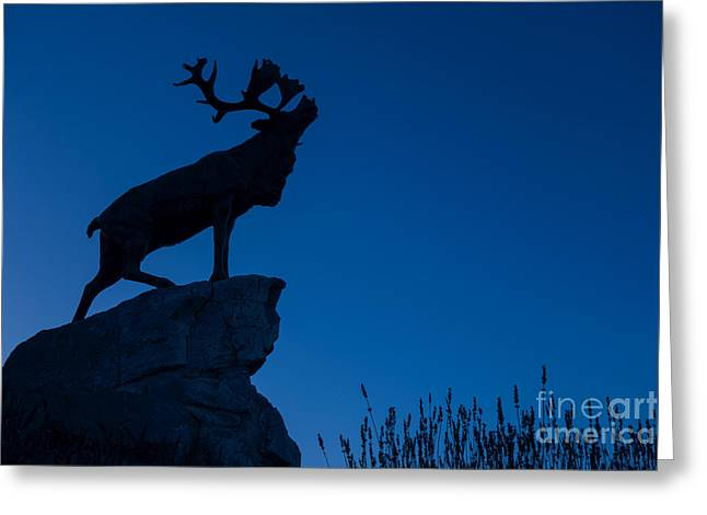 Hamels Photographs Greeting Cards - 130918p142 Greeting Card by Arterra Picture Library