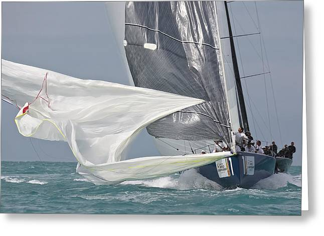 Ultimate Luxury Greeting Cards - Miami Regatta Greeting Card by Steven Lapkin