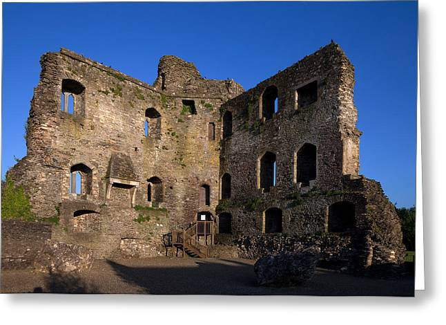 Curtain Wall Greeting Cards - 13th Century Castle , Ferns, County Greeting Card by Panoramic Images