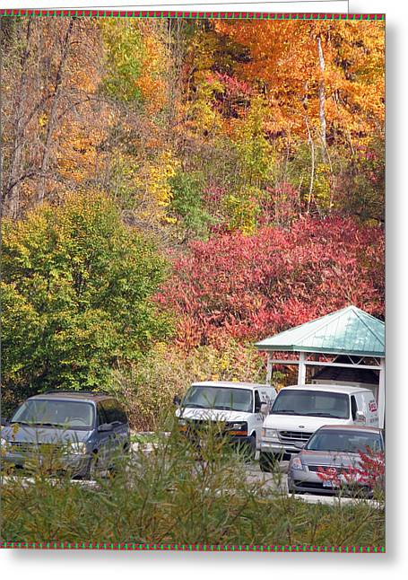 Lions Greeting Cards -    Canadian Fall Season Colors Oakville Ontario Lyon Ridge Trail River Stream Picknic spot bird watc Greeting Card by Navin Joshi
