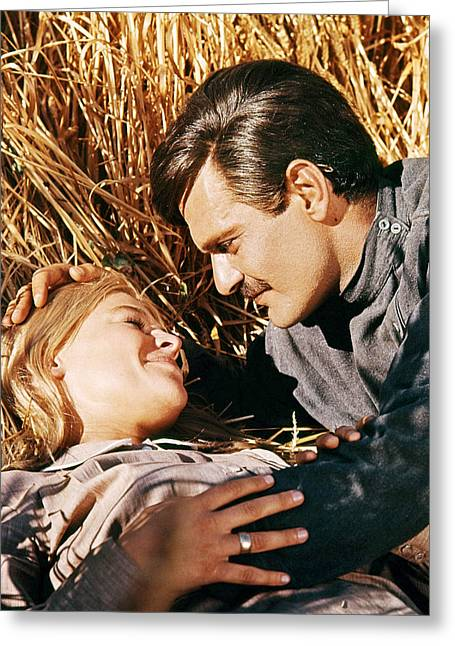 Omar Sharif Greeting Cards - Doctor Zhivago  Greeting Card by Silver Screen