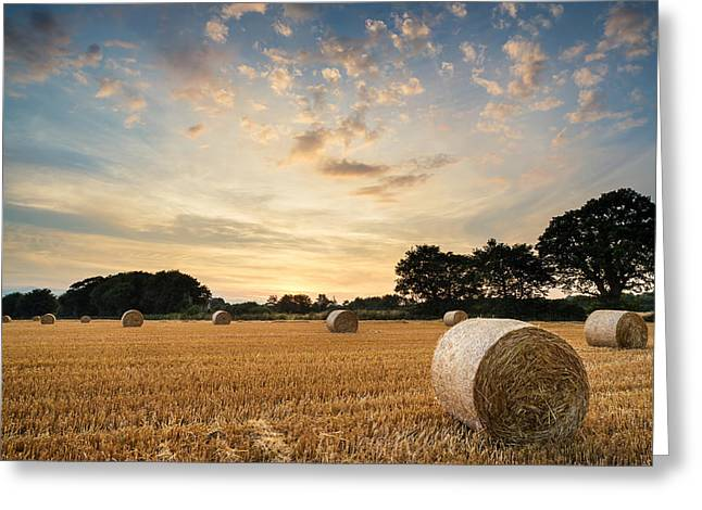Stunning Summer landscape of hay bales in field at sunset Greeting Card by Matthew Gibson