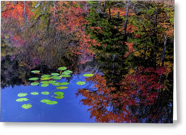 Usa, New York, Adirondack Mountains Greeting Card by Jaynes Gallery