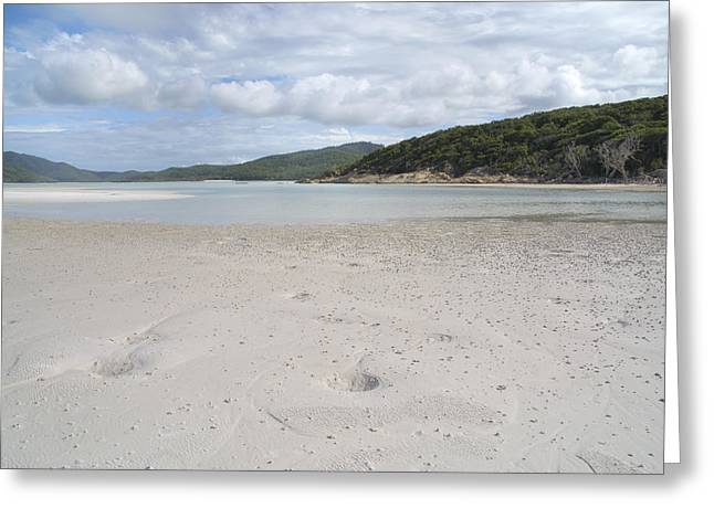 Whitsunday Greeting Cards - Whitsunday Islands Greeting Card by Carol Ailles