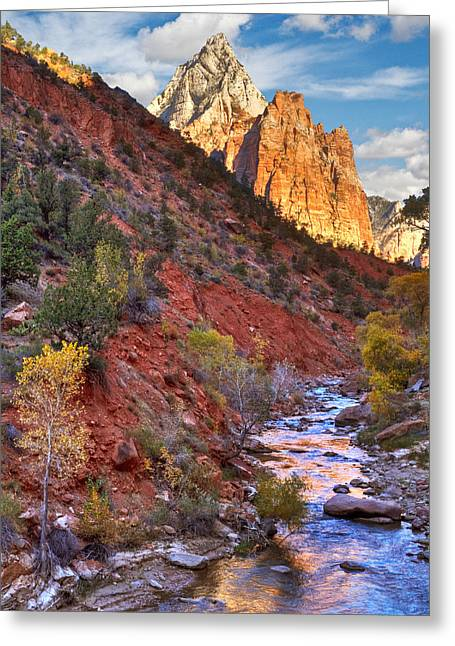 Slickrock Greeting Cards - Zion National Park Greeting Card by Utah Images