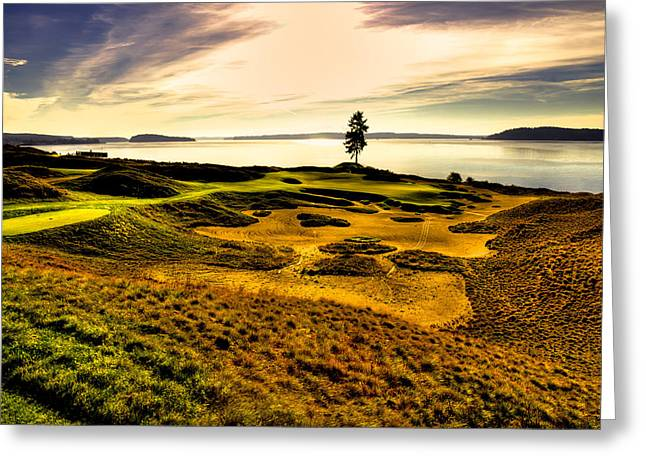 Chambers Bay Golf Course Greeting Cards - #15 at Chambers Bay Golf Course  Greeting Card by David Patterson
