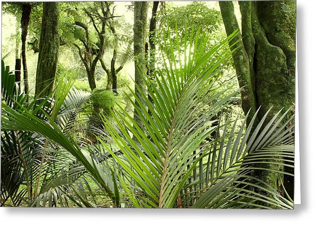 Lush Vegetation Greeting Cards - Jungle Greeting Card by Les Cunliffe