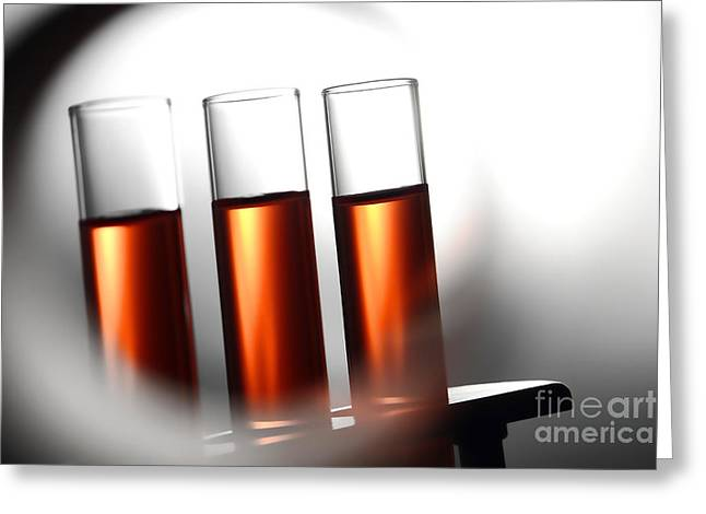 Rack Greeting Cards - Laboratory Test Tubes in Science Research Lab Greeting Card by Science Research Lab By Olivier Le Queinec