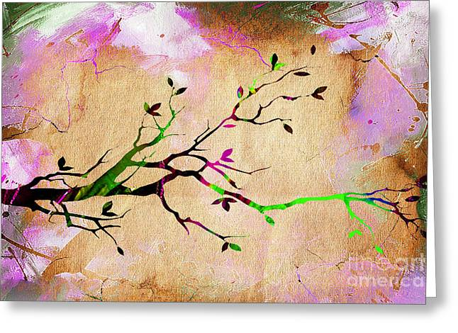 Branches Greeting Cards - Tree Branch Collection Greeting Card by Marvin Blaine