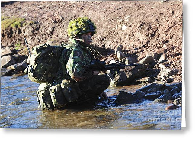 Stream Greeting Cards - Welsh Guards Platoon Training Greeting Card by Andrew Chittock