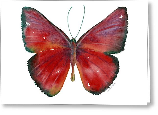 Background Paintings Greeting Cards - 16 Mesene Rubella Butterfly Greeting Card by Amy Kirkpatrick