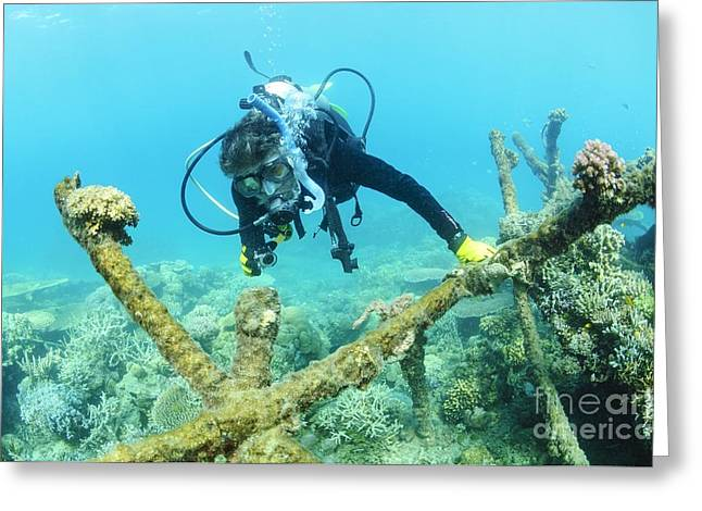 Human Degradation Greeting Cards - Biorock Reef Restoration, Indonesia Greeting Card by Matthew Oldfield