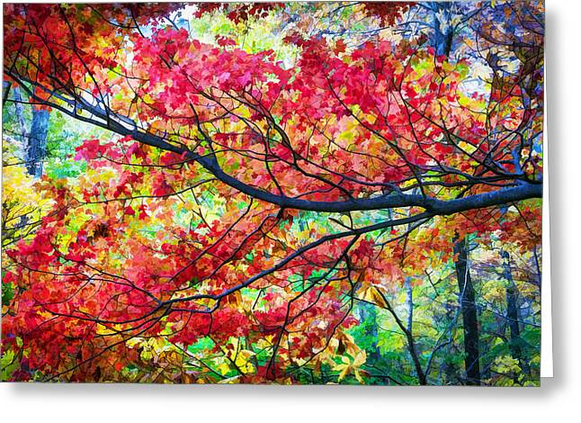 Red Leaves Greeting Cards - Fall Foliage Great Smoky Mountains Painted Greeting Card by Rich Franco