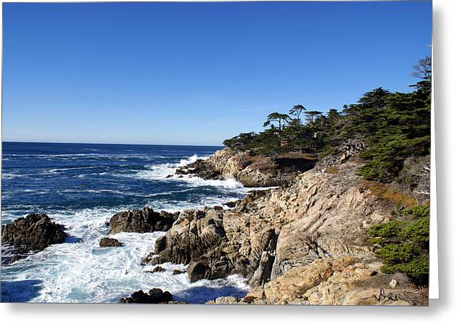 California Central Coast Greeting Cards - 17 Mile Drive II Greeting Card by Barbara Snyder