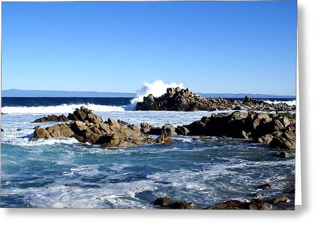 Seascape Greeting Cards - 17 Mile Drive III Greeting Card by Barbara Snyder