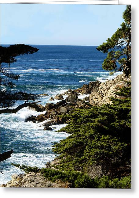 Monterey Ocean Scene Greeting Cards - 17 Mile Drive IV Greeting Card by Barbara Snyder