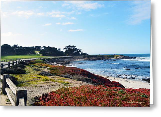 Split Rail Fence Greeting Cards - 17 Mile Drive Shore Line Greeting Card by Barbara Snyder