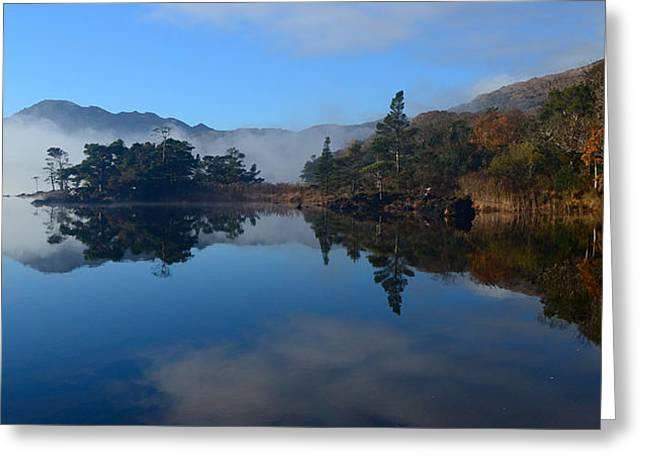 Tress Framed Prints Greeting Cards - Muckross Lake Greeting Card by Barbara Walsh
