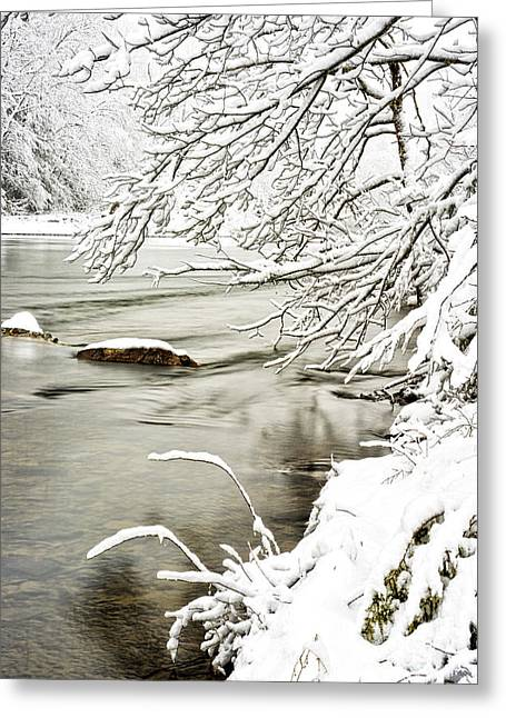 Williams River Greeting Cards - Winter along Williams River Greeting Card by Thomas R Fletcher