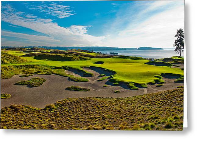 Chambers Bay Golf Course Greeting Cards - #15 at Chambers Bay Golf Course III Greeting Card by David Patterson