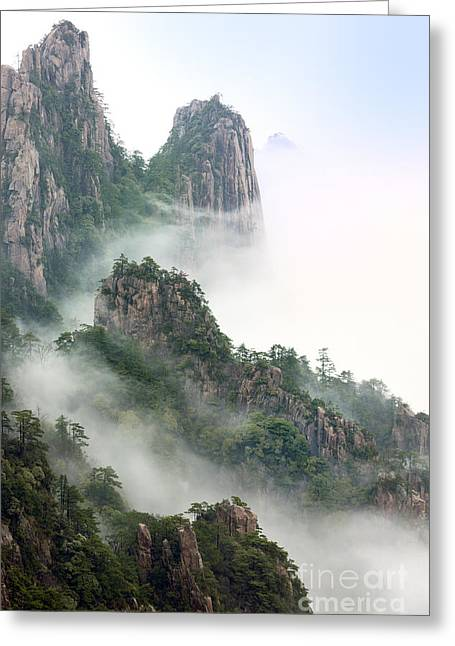 Mist Greeting Cards - Beauty In Nature Greeting Card by King Wu