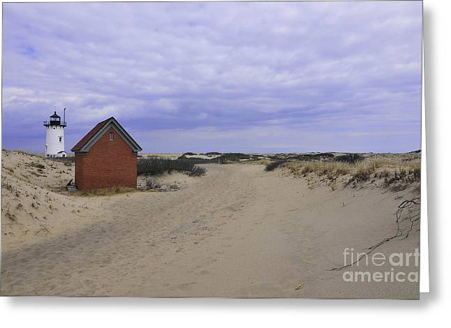 Race Point Light Greeting Cards - Race Point Light Greeting Card by Catherine Reusch  Daley
