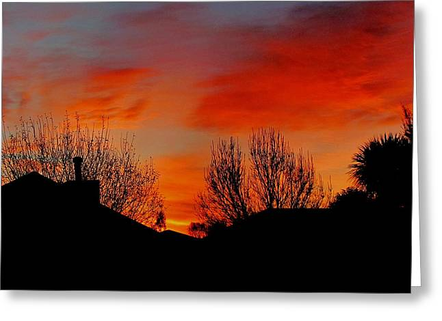 Joyce Woodhouse Greeting Cards - Sunset Greeting Card by Joyce Woodhouse