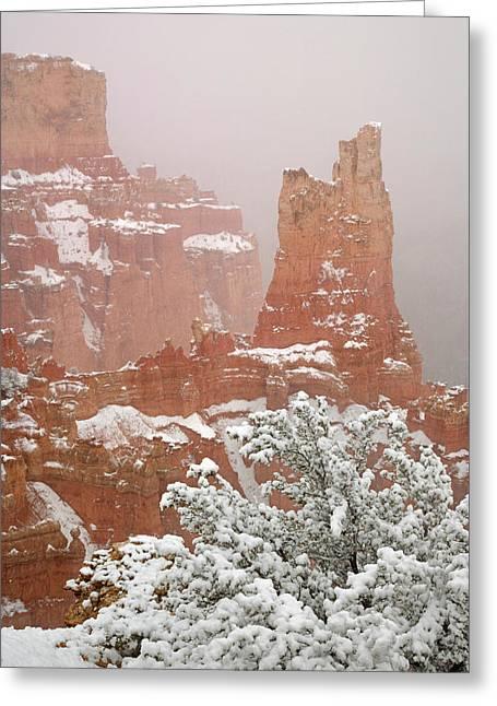 Usa, Utah, Bryce Canyon National Park Greeting Card by Jaynes Gallery
