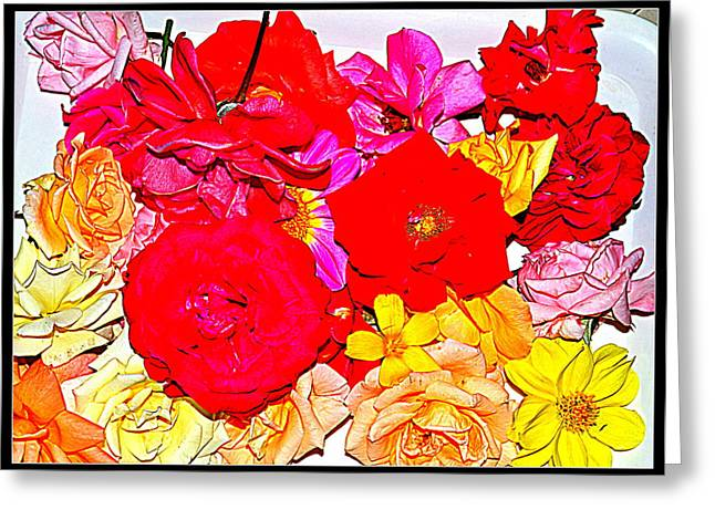 Flowers Flowers And Flowers Greeting Card by Anand Swaroop Manchiraju