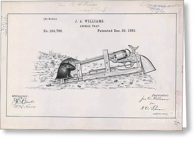 1882 Greeting Cards - 1882 Animal Trap Patent Drawing  Greeting Card by Jon Neidert