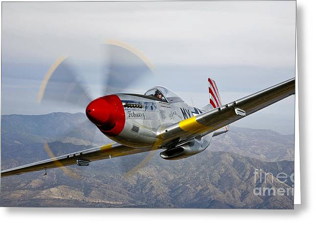 Prescott Greeting Cards - A P-51d Mustang In Flight Greeting Card by Scott Germain