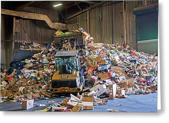 Recycling Plant Greeting Card by Jim West