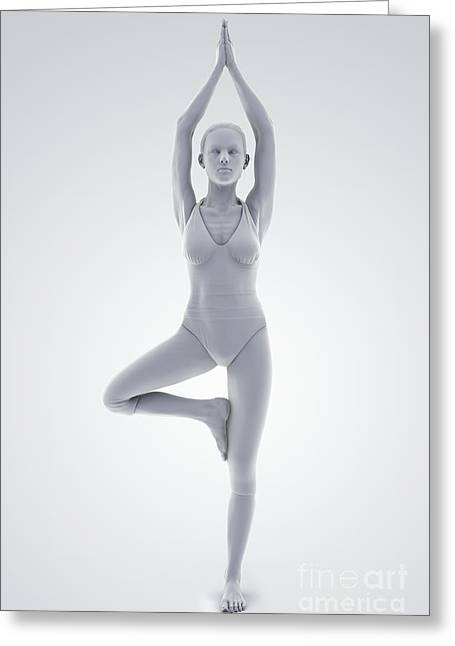 Agility Greeting Cards - Yoga Tree Pose Greeting Card by Science Picture Co