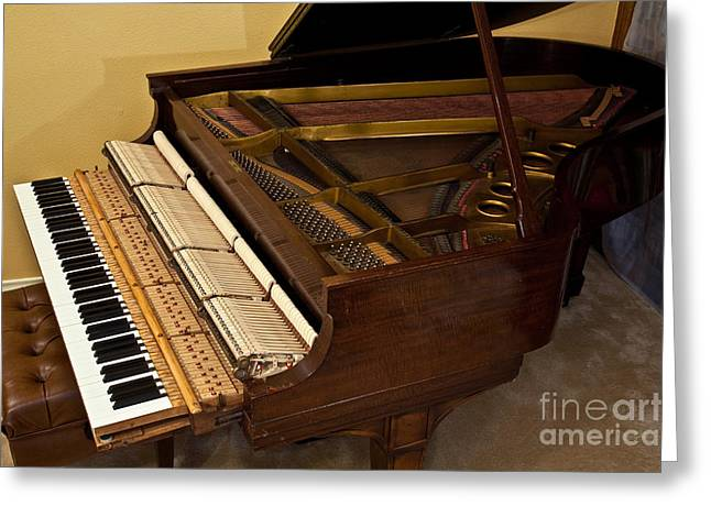 Sound Board Greeting Cards - 1909 Steinway Grand Piano Greeting Card by Gregory G. Dimijian, M.D.