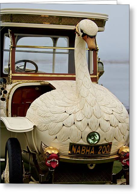 Swans... Greeting Cards - 1910 Brooke Swan Car Greeting Card by Jill Reger