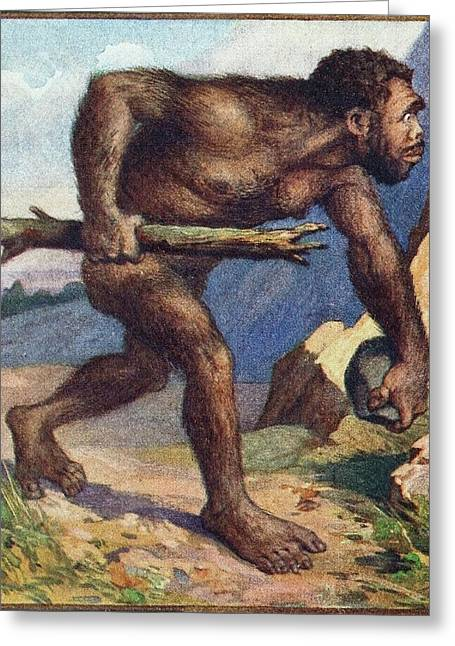 1910 Earliest Colour Neanderthal Print Greeting Card by Paul D Stewart