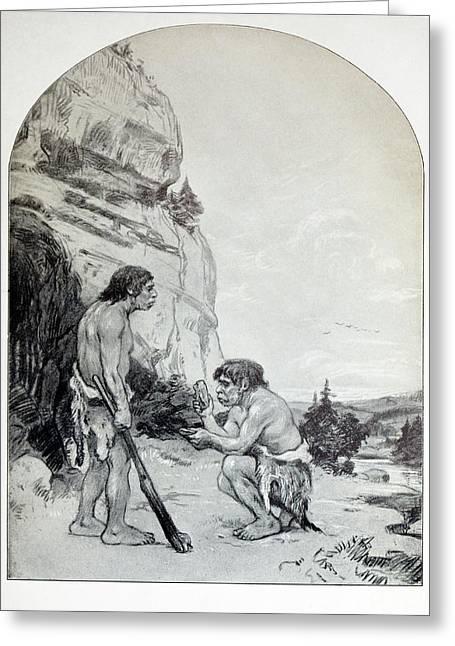 1916 C. Knight Osborn Neanderthal Artwork Greeting Card by Paul D Stewart