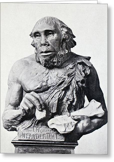 1916 First 3d Neanderthal Reconstruction Greeting Card by Paul D Stewart