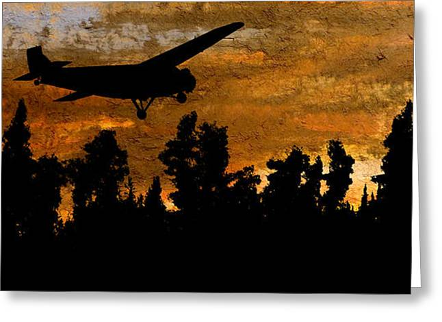 Passenger Plane Mixed Media Greeting Cards - 1920s Ford Trimotor Airplane Skims Treetops Greeting Card by R Kyllo