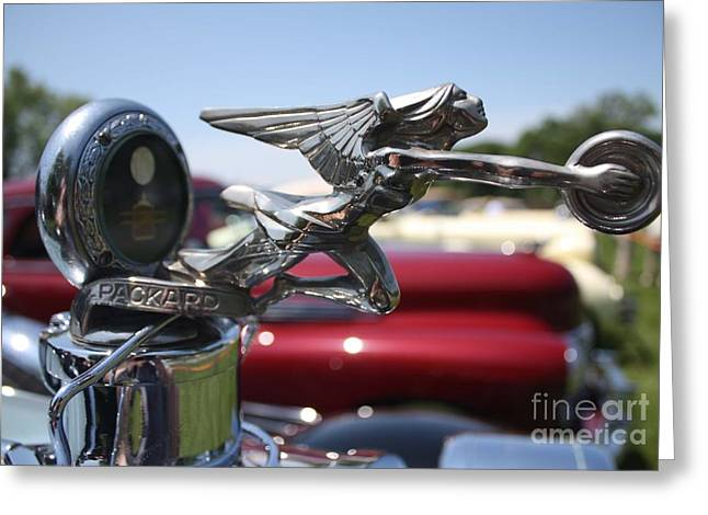 Victoria Johns Greeting Cards - 1928 Packard Hood Ornament Greeting Card by John Telfer