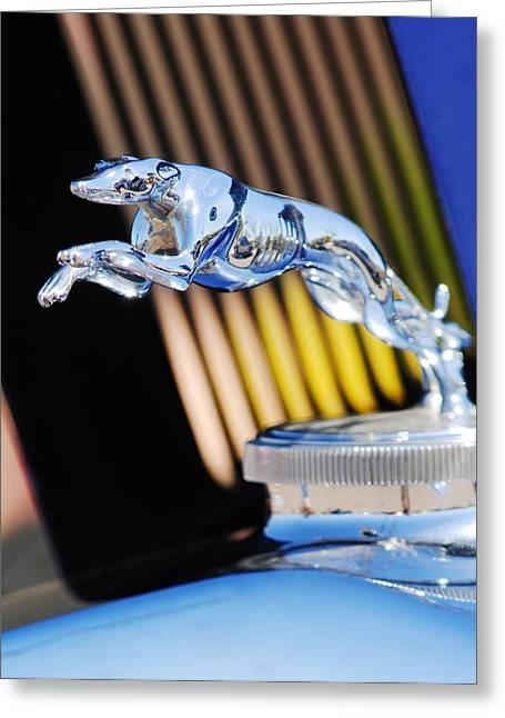 Greyhound Photographs Greeting Cards - 1930 Lincoln L Judkins Berline Hood Ornament Greeting Card by Jill Reger