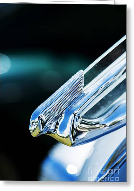 1930s Greeting Cards - 1930s Cadillac V8 Hood Ornament  Greeting Card by Tim Gainey